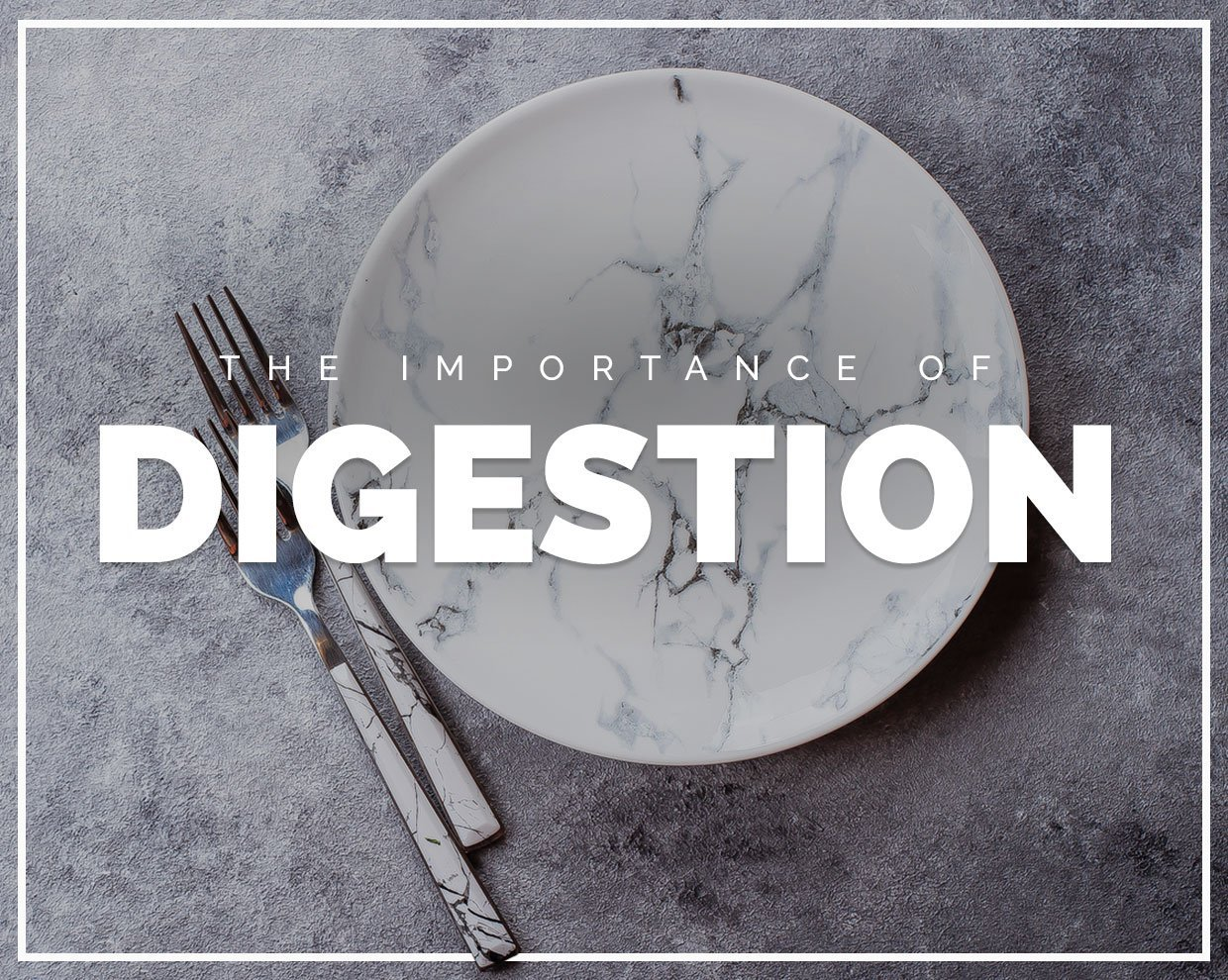 The Importance of Digestion